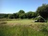 dandelion-camping-area