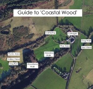 coastal wood map 1